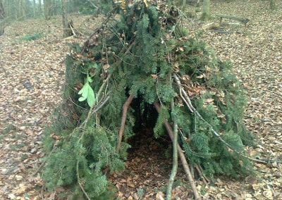 Forest Schools 2011 31