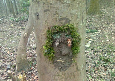 Forest Schools 2011 4