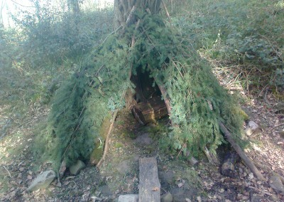 Forest Schools 2011 11
