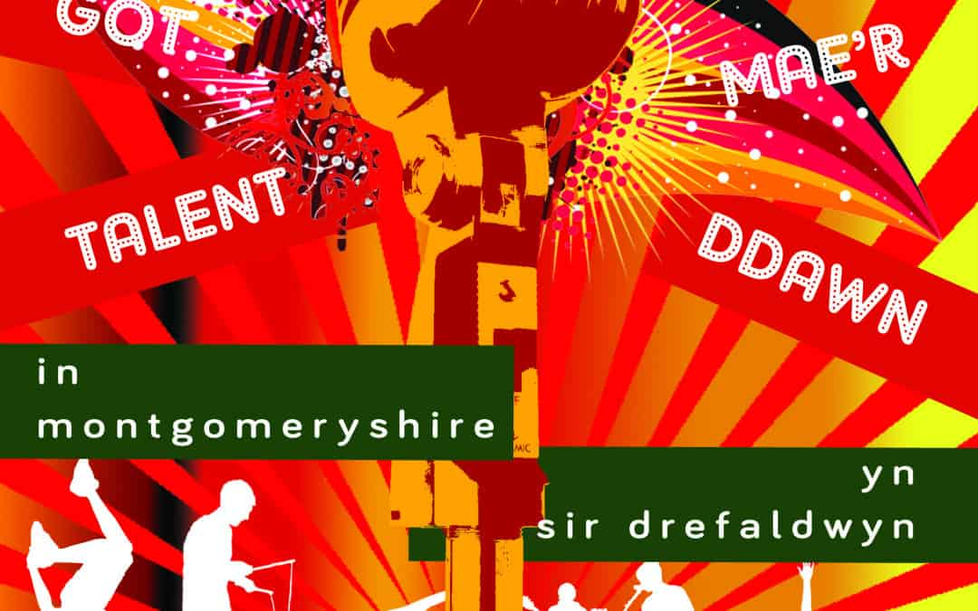 Who's Got Talent in Montgomeryshire? 2015
