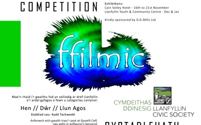 Llanfyllin Photo Competition 2016