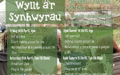 Wilding the Senses – April Camp-Out