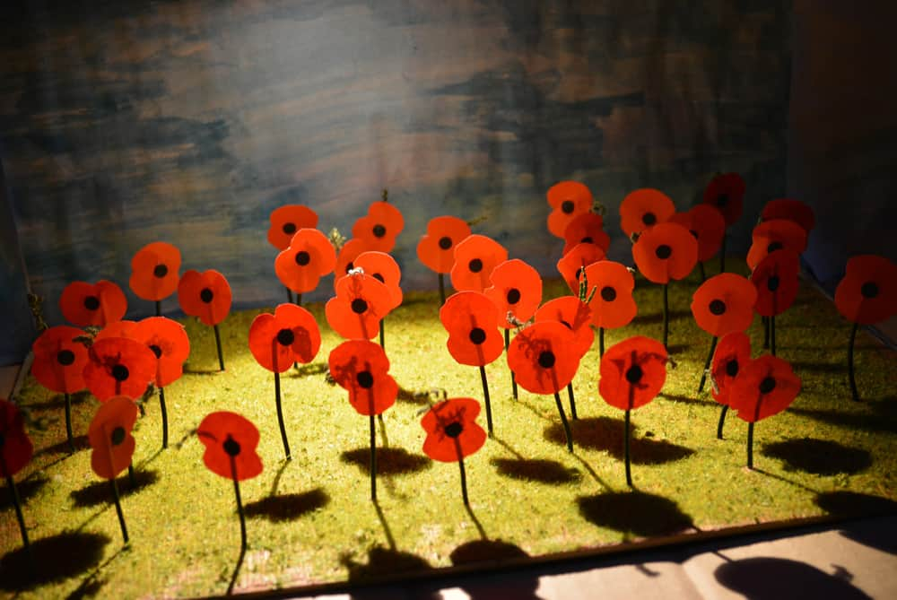 Generations On: What the Great War Meant to Us 2015